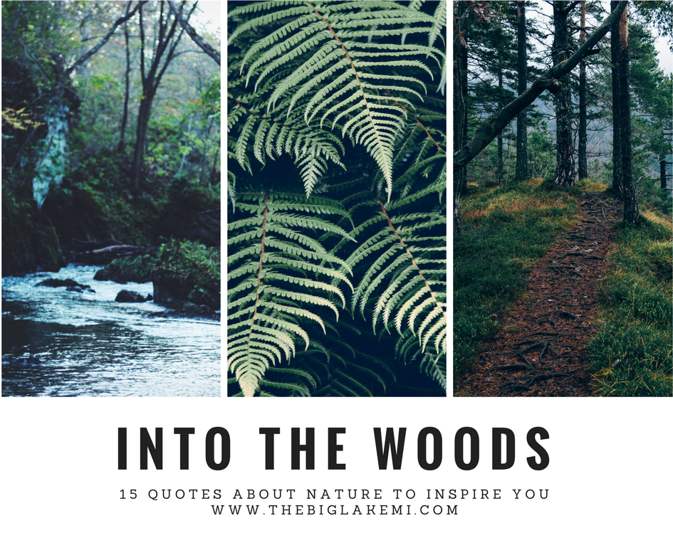 15 Beautiful Quotes About Nature And Wilderness To Inspire You